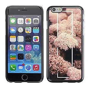 TopCaseStore / la caja del caucho duro de la cubierta de protección de la piel - Coral Sea Life Nature Fish Diving Underwater - Apple iPhone 6 Plus 5.5