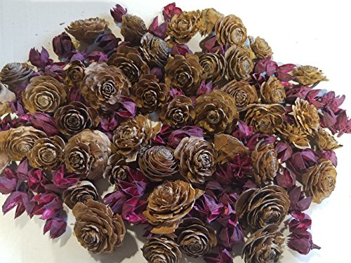 Cedar Rose Pine Cones with Dried Flowers - Perfect for Potpourri, Bowl Fillers, Home Decor, Crafting - Can be used in all Seasons, Best for Fall and Winter by MerdCraft