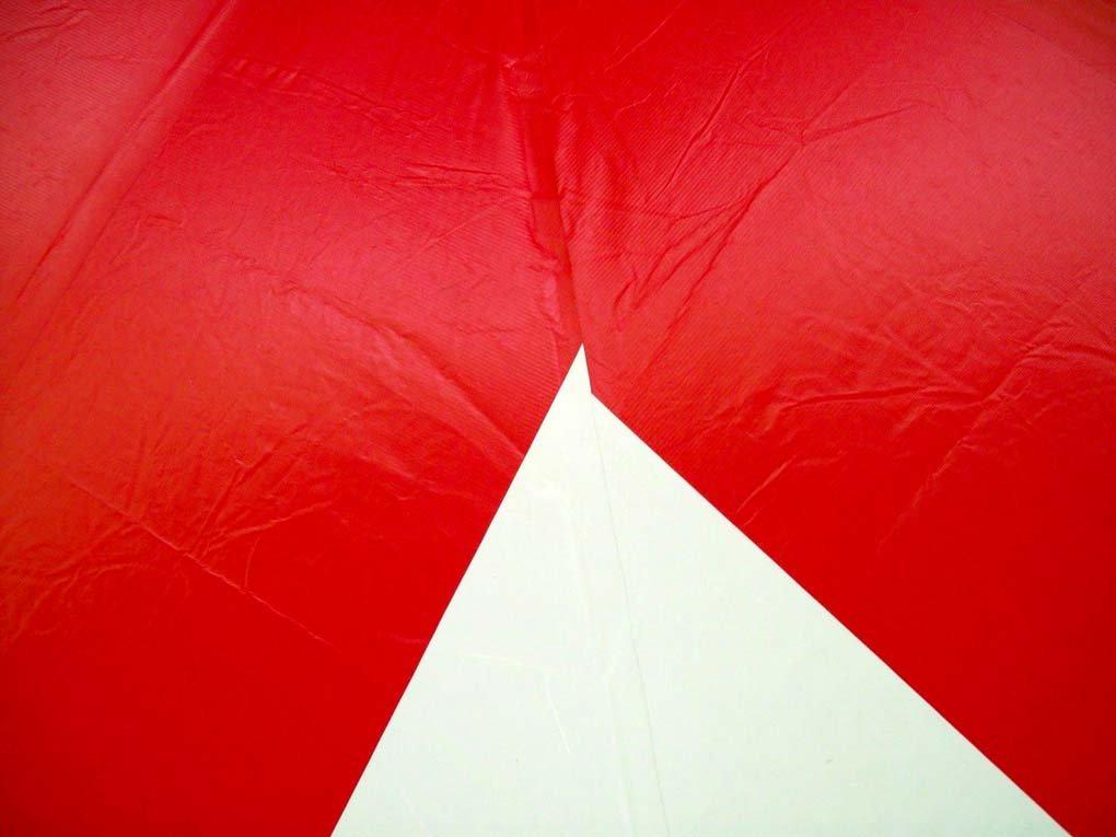 Amazon.com: 20-foot por 40-foot Rojo y Blanco Polo tienda de ...