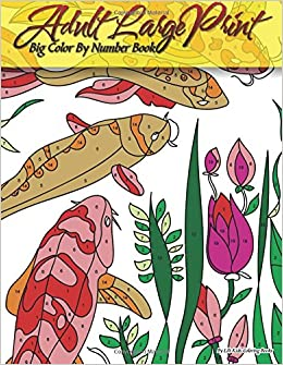 Adult Large Print Big Color By Number Book Premium Coloring Books Volume 20 Lilt Kids 9781979025003 Amazon