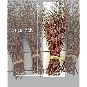 150 Birch twigs - 3 bundles. white birch branches, Centerpieces.Thin birch branches.birch branches for decoration, Decorative branches (3x50pcs bundles) 3