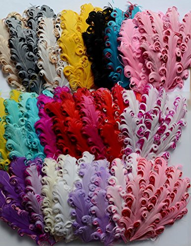 12 pcs Mixed Lots Assorted Curly Goose N - Feather Hat Band Shopping Results