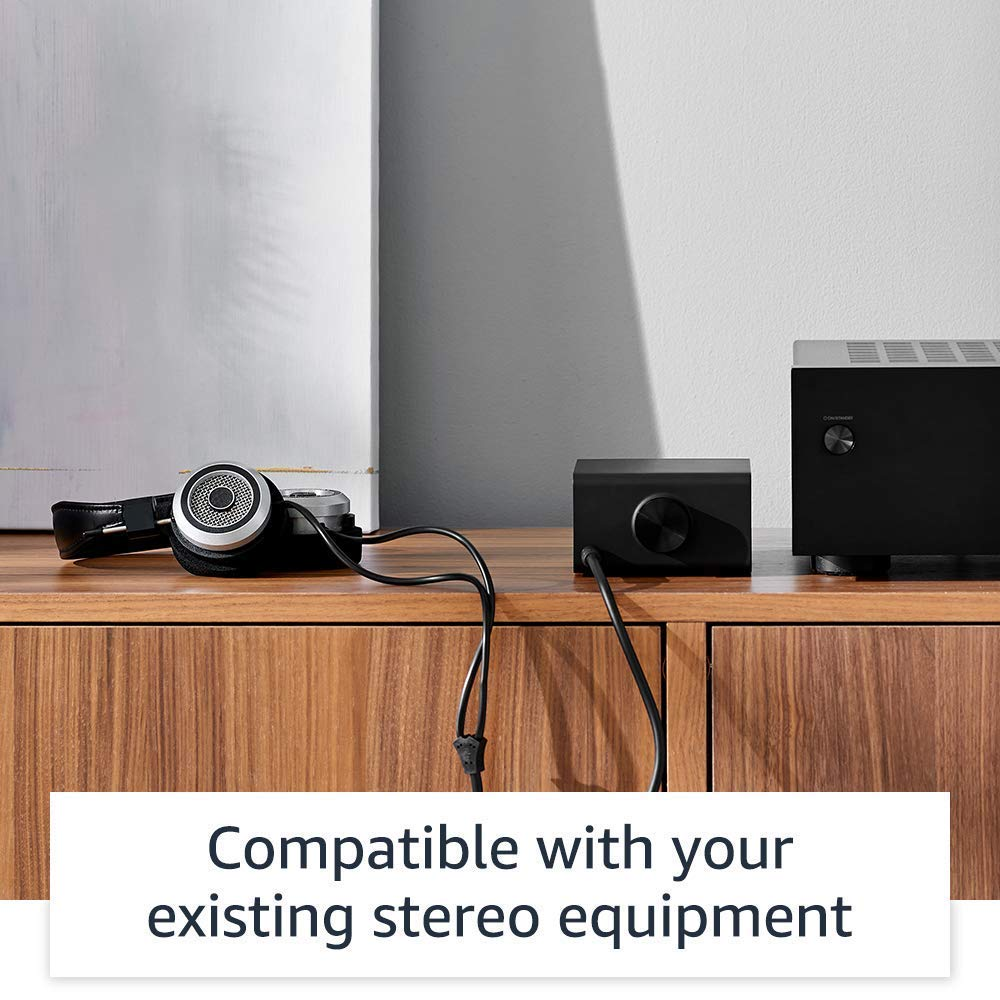 Stream hi-fi music to your stereo system Echo Link