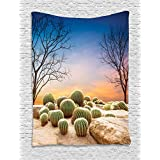 Cactus Decor Tapestry by Ambesonne, Cactus Balls with Spikes on a Montain Desert Sand Mexican Landscape Photo, Wall Hanging for Bedroom Living Room Dorm, 40WX60L Inches, Multicolor