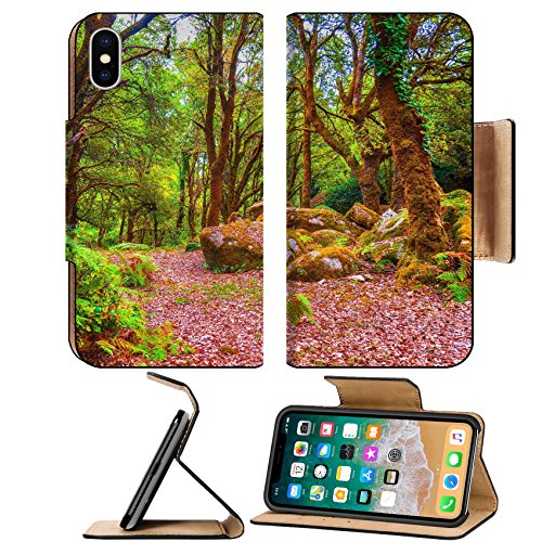Afternoon Path - MSD Premium Apple iPhone X Flip Pu Leather Wallet Case IMAGE ID 30865491 Wooden path in the forest in a summer afternoon