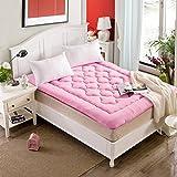 hxxxy Tatami floor mat,Dorm Flannel Futon mattress topper,Foldable cushion mats-A 100x200cm(39x79inch)
