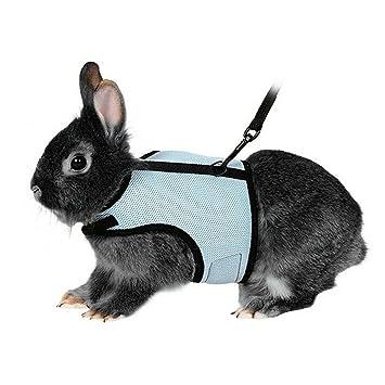 Hypeety Arnés para gato de conejo, correa ajustable para animales pequeños, arnés suave y juego de plomo para pasear a un gato o mascota pequeña.