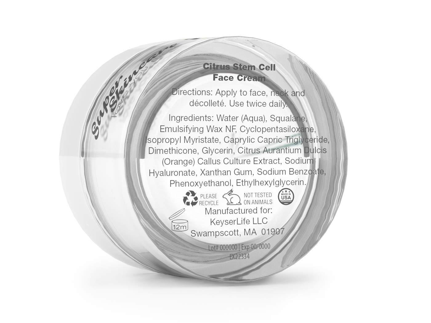 Citrus Stem Cell Face Cream 1oz.
