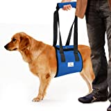 Dog Lift Harness Sling ACL Brace Limping Help Up Aid Veterinarian Approved for Old K9 Cruciate Ligament Support, Canine Arthritis, Rehabilitation, Poor Stability, Joint Injuries, Mobility and Recovery
