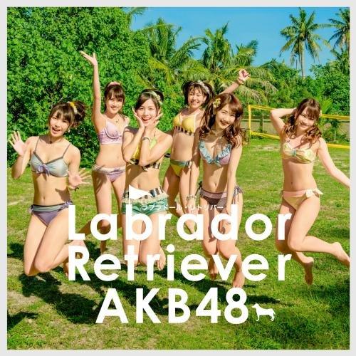 AKB48 / ラブラドール・レトリバー[DVD付初回限定盤](TYPE-K)