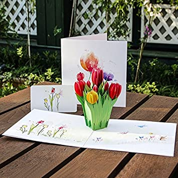 Amazon Com Kofun Greeting Card With Envelope 3d Tulips Flowers Pop