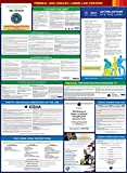 Compliance Assistance - 2018 Indiana State and Federal All-in-one Labor Law Poster - Laminated (English)