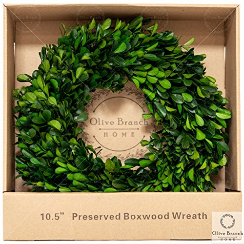 (Olive Branch Home Preserved Boxwood Wreath Small Indoor (10.5 Inch)