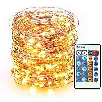 Amazon.com: Deneve Led Copper String Lights (50ft. Standard ...