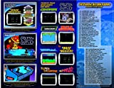 Chicago Gaming Company Extreme Arcade Game