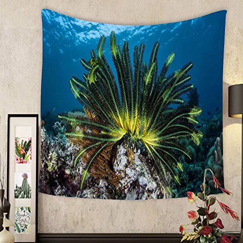 Lee S. Jones Custom tapestry a colorful crinoid clings to a shallow reef in indonesia this part of the tropical pacific harbors by Lee S. Jones