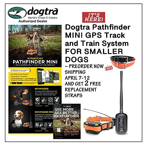 Dogtra Pathfinder Mini GPS Track and Train System for Smaller Dogs – PreOrder Now Shipping W/O 4/21 and GET 2 Free Replacement Straps