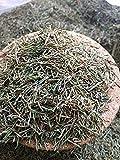 Organic Bio Herbs-Organic Dried Horsetail (Equisetum) 4 Oz.