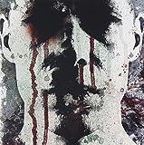The Mirror by Awaken Demons (2009-08-25)