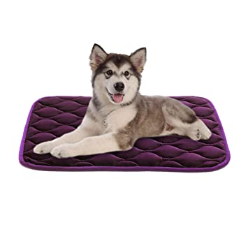 Amazon.com: SHU UFANRO Dog Bed Crate Pad Washable Mat Anti ...