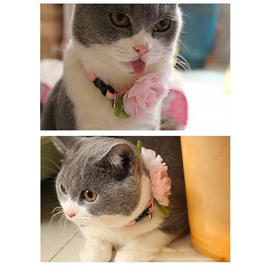 JasmineLi - Collar ajustable para perro, gato, mascota, diseño de ...