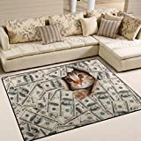 ALAZA Hipster Cat Kitten Dollar Money Area Rug Rugs for Living Room Bedroom 5'3 x 4′
