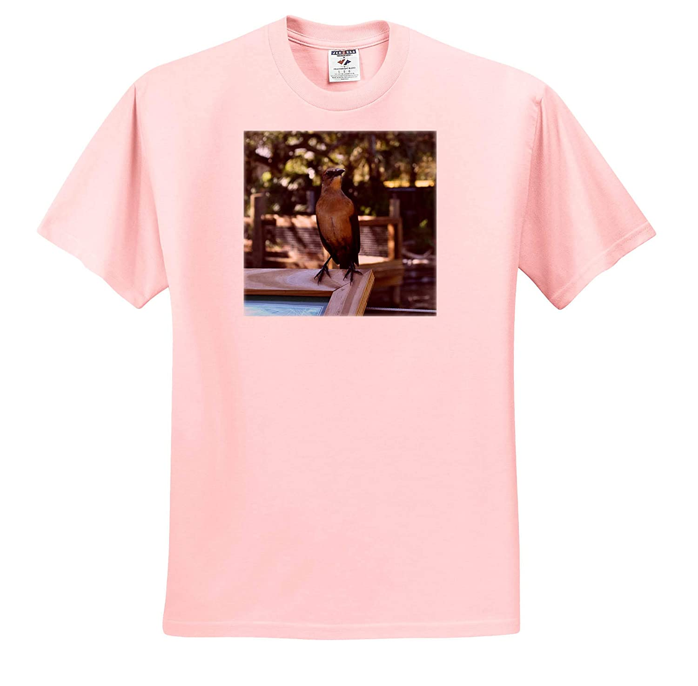 Mockingbird on Wooden Sign Florida Bird T-Shirts 3dRose Susans Zoo Crew Animal