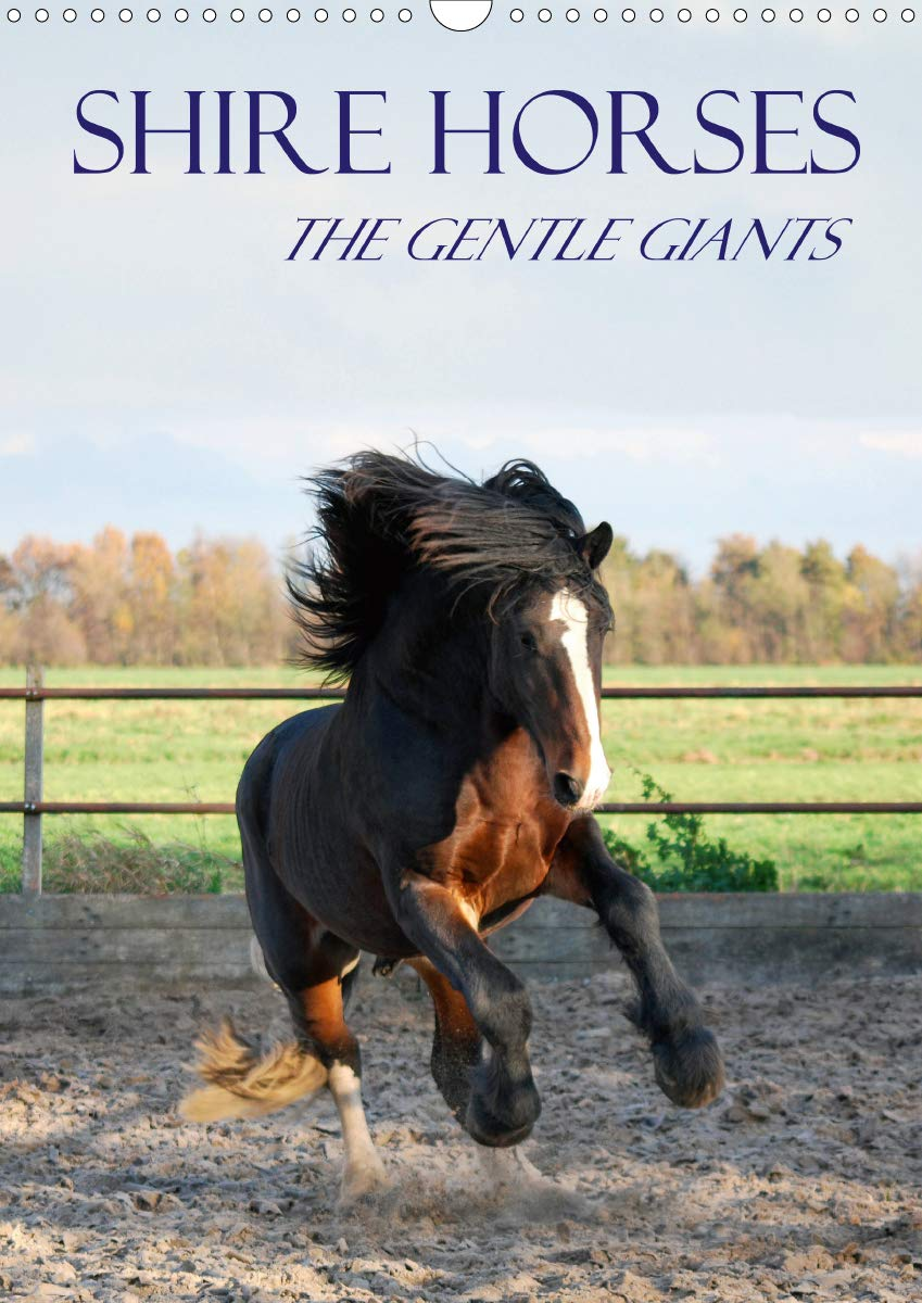 Shire Horses The Gentle Giants  Wall Calendar 2020 DIN A3 Portrait