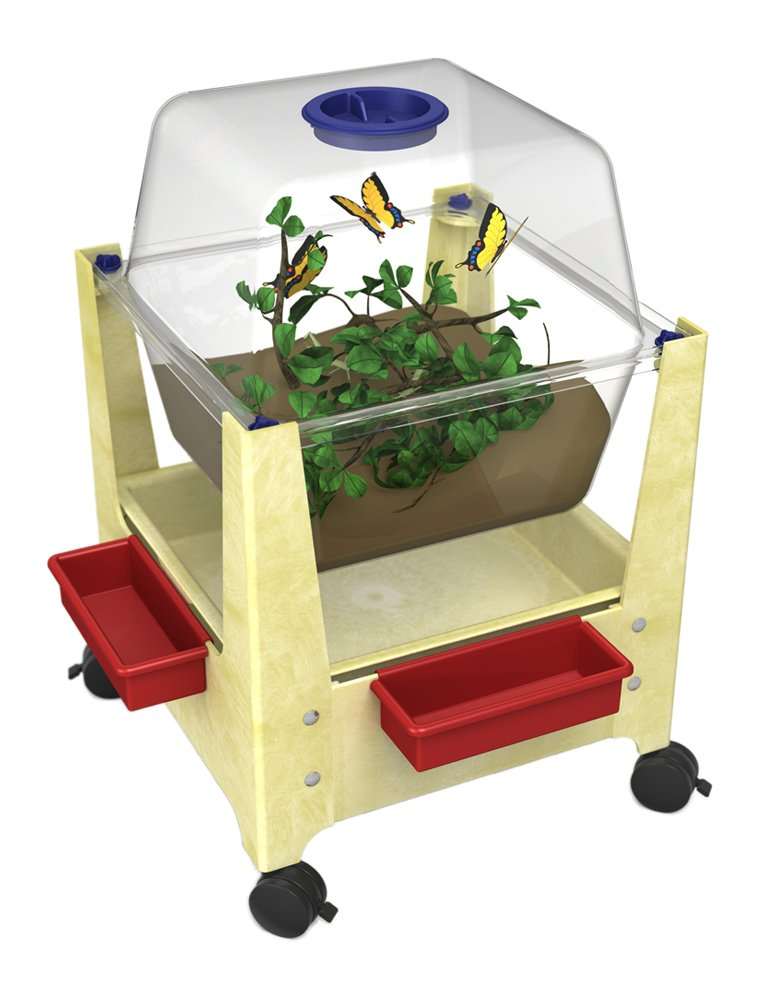 ChildBrite Sandal Frame Science/Habitat Center