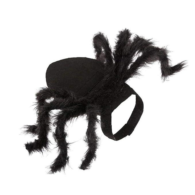 JRXyDfxn Traje del Gato Araña Araña 1PC Ajustable De Halloween ...