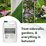 Energen Carolina LLC Vinegar Weed & Grass Killer