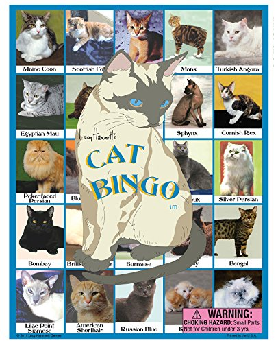Cat Bingo (Cat Bingo Game)