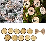 OldSch001 10Pcs Wooden Christmas Tree Hanging Ornament Wood Slices DIY Art Craft Gift Tags