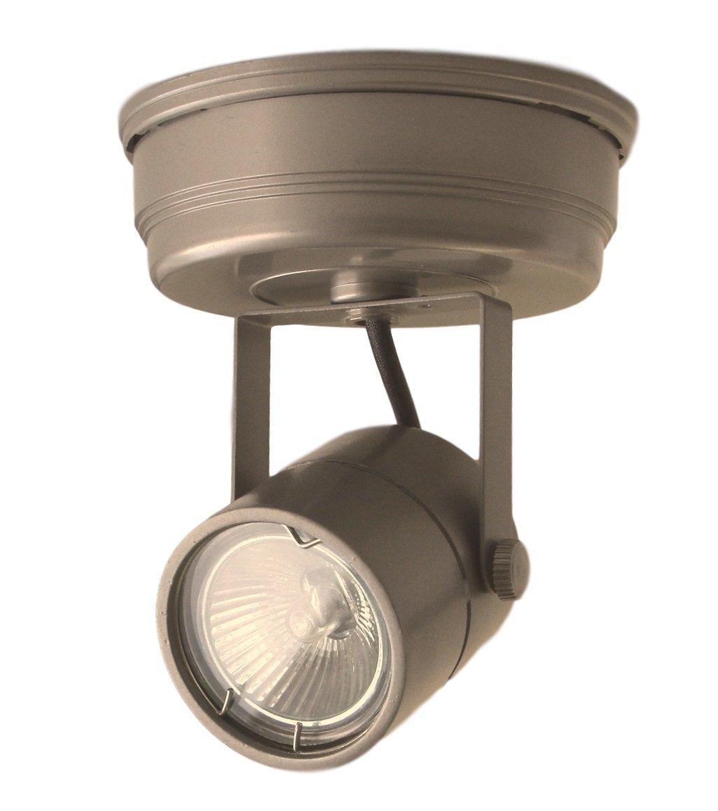 1 Lamp Ceiling Flush Mount , Single Head Track Light , Pewter Marquis Lighting