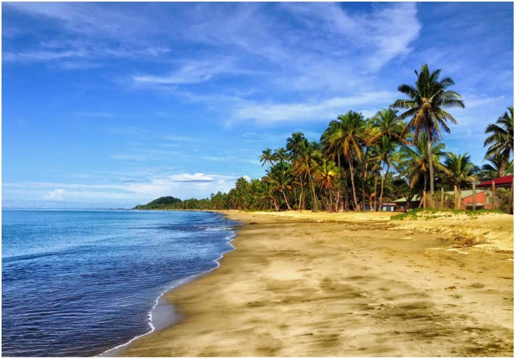 Fridge Magnet, Fiji, Sandy Beach, Palm Trees, Ocean, Travel, Souvenir Magnet 2 inch x 3 inch Refrigerator Magnet