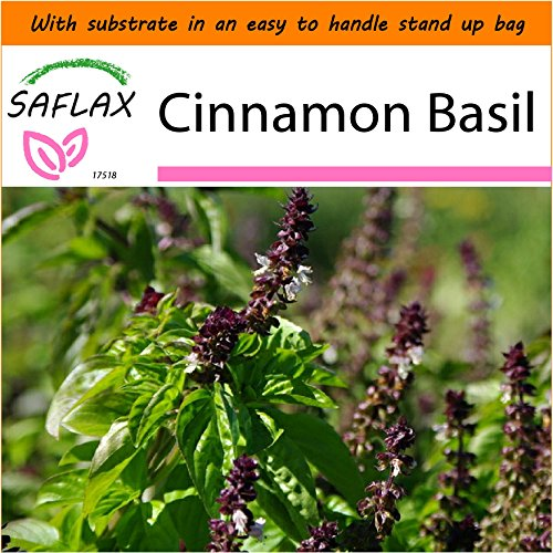 Basil Garden In A Bag - 9