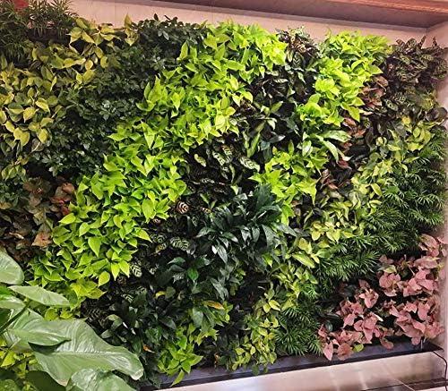 TTIK Jardín Vertical Pared Maceta de Flores Exterior decoración de Plantas Mecanismo de Drenaje Innovador, Largo Ciclo de Vida para jardín hogar Interior Exterior decoración de balcón terraza: Amazon.es: Hogar