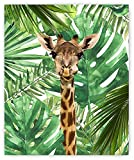 Designs by Maria Inc. Jungle Safari Baby Animals