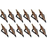 Huntingdoor 12Pack 3 Fixed Blade Archery Broadheads 125 Grain Arrow Head Hunting Arrow Tips Golden for Compound Bow and Crossbow