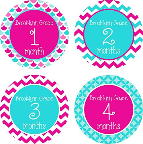 Little LillyBug Designs - Monthly Baby Stickers - Girl - Hot Pink and Teal Sampler