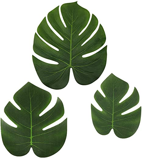 Amazon Com Ljdj Tropical Leaves Palm Set Of 36 Artificial Silk Fabric Monstera Decoration Leaf 3 Different Sizes Small Medium Large Hawaiian Luau Jungle Beach Theme Party Supplies Table Decor Lovepik provides 61000+ tropical leaves photos in hd resolution that updates everyday, you can free download for both personal and commerical use. ljdj tropical leaves palm set of 36 artificial silk fabric monstera decoration leaf 3 different sizes small medium large hawaiian luau jungle