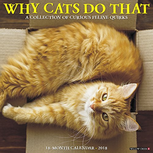 Why Cats Do That 2018 Wall Calendar
