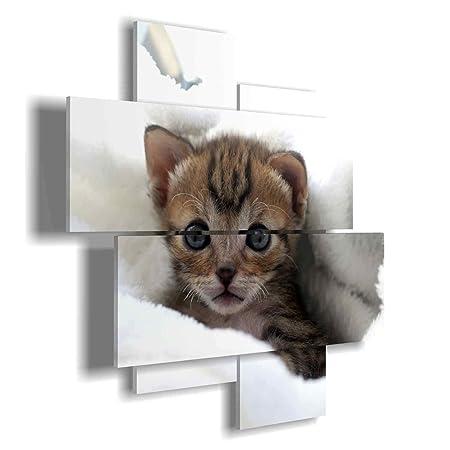 duudaart Quadro Moderno Cucciolo di Gatto 03 multilivello 3D ...