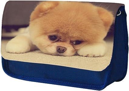 Perros 109, Cachorro triste, Azul Escuela Niños Sublimación Alta calidad Poliéster Estuche de lápices con Diseño Colorido. 21x13 cm.: Amazon.es: Oficina y papelería