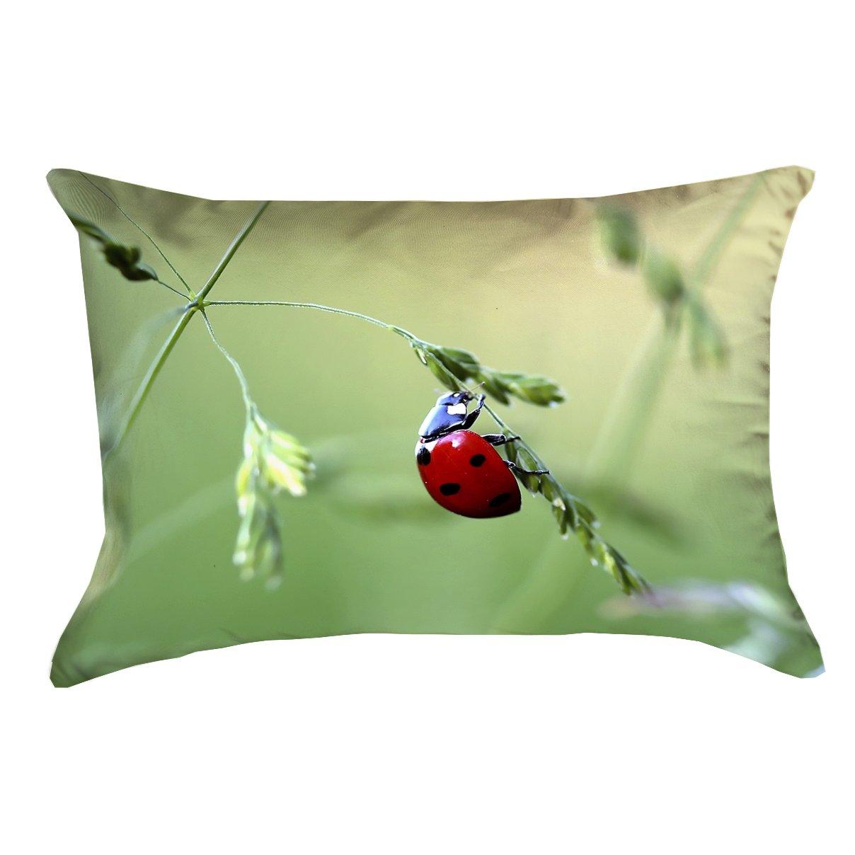 ArtVerse Myriam 14 x 14 Spun Polyester Ladybug Pillow