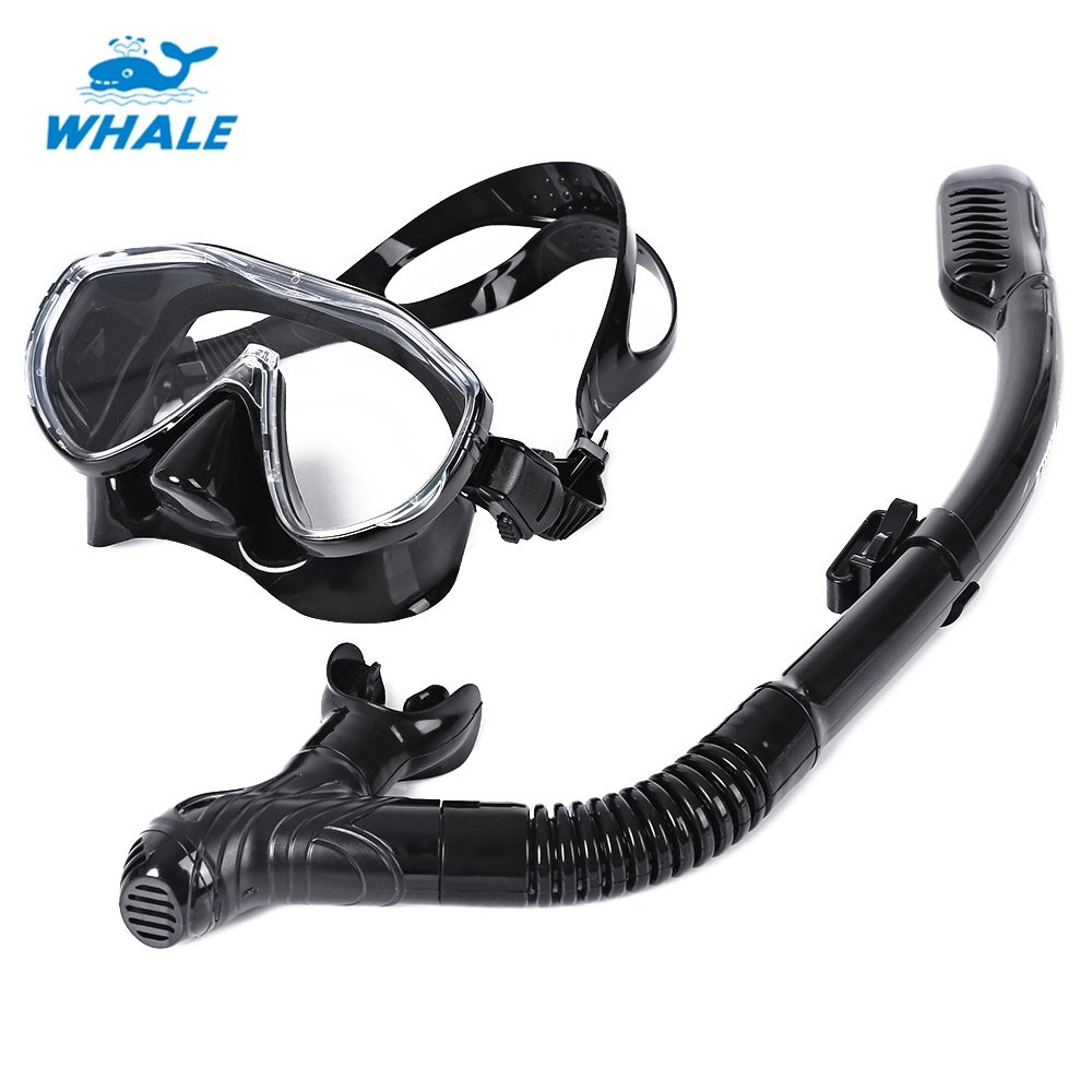 Whale Diving Mask, Professional Diving Flexible Silicone Mask Snorkel Set