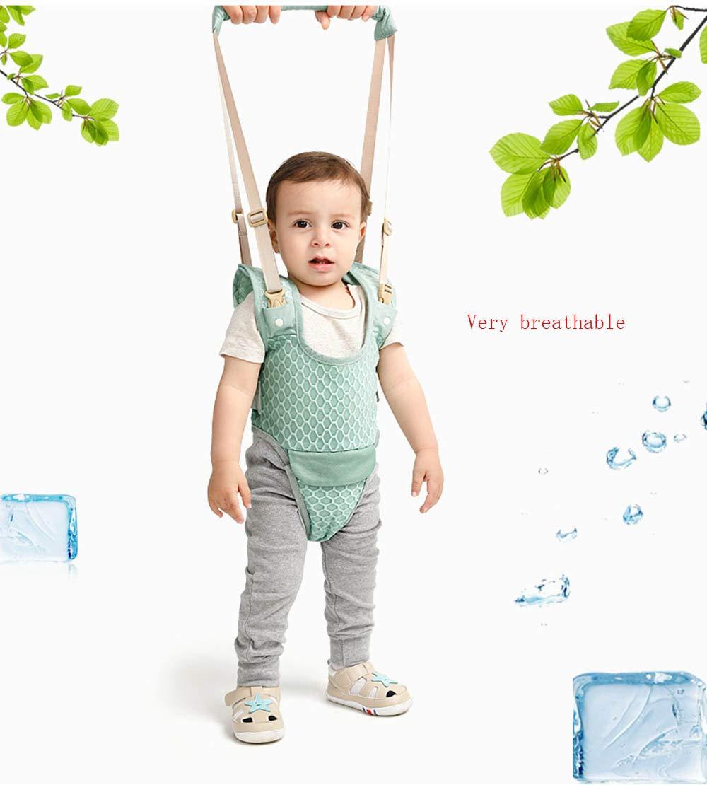 Aimire Andador Toddler Walking Assistant, De pie y caminando ...
