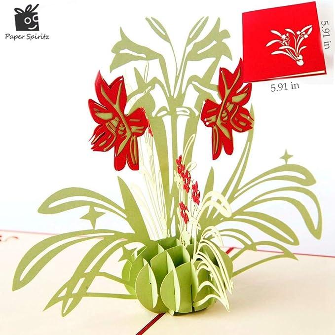 Amazon.com: Tarjeta 3D desplegable, diseño de flores de ...