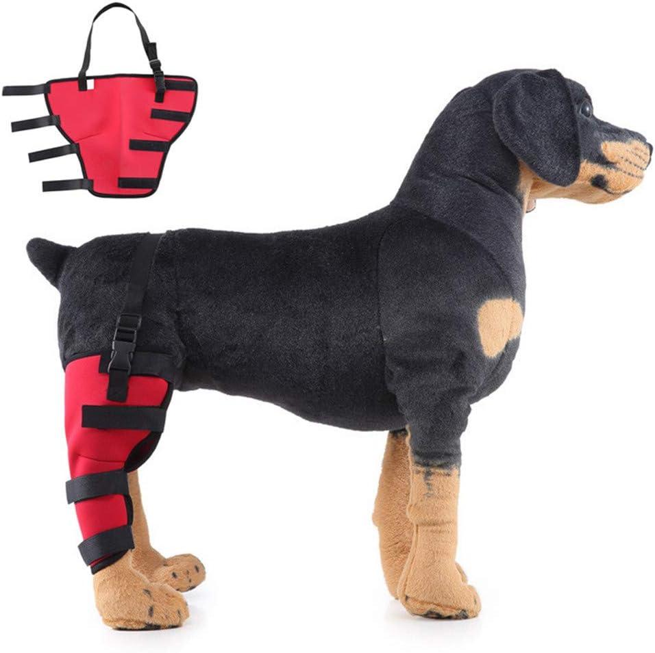 Condoprotectores Perros Rodillera Perro Perro Aparato ortopédico de Pierna Conjunto de Ayuda los Perros Alivio del Dolor para Perros Red,Right-Leg-m