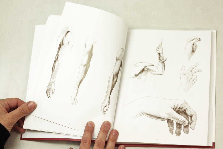 Anatomische Zeichenschule Mensch: Amazon.de: Andras Szunyoghy ...